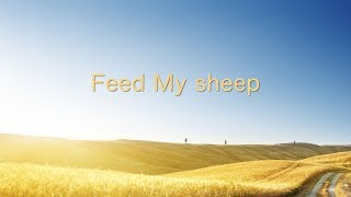 feed me sheep