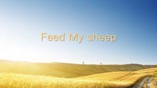 feed me sheep