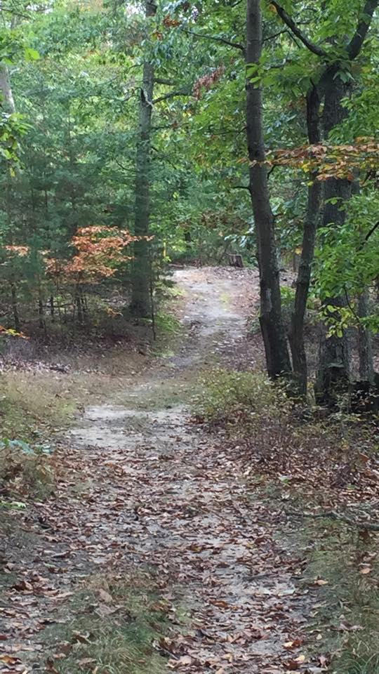 The Path I'mOn…